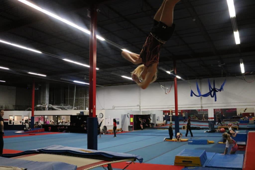 Aerial, Trampoline, Tumbling Acrobatics